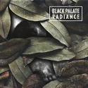 Black Palate / Radiance - split EP