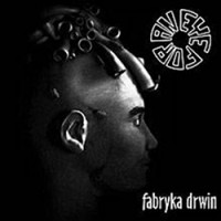 EYE FOR AN EYE - Fabryka drwin LP - PREORDER